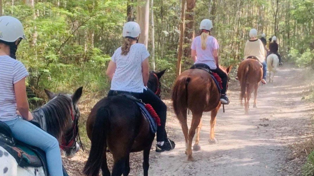 Tunnel Ridge Ranch Horse Trails